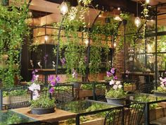 Aoyama Flower Market TEA HOUSE, Tokyo, Japan — by Kaori. Aoyama Flower Market Tea House is a lovely cafe produced by the adjoining flower shop. The cafe is like a greenhouse,...