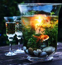 Outdoor Wedding Tables, Vases Decor, Table Decorations, Indoor Water Garden, Fairy Tea Parties, Inside Garden, Good Night Gif, Faux Plants, Garden Crafts