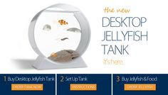 I sooo want this.  tiny jellyfish are so cute. Then they can keep me company in my office