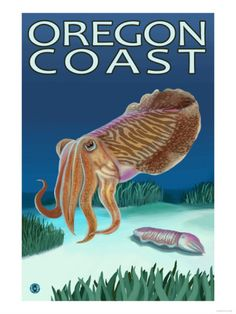 I am disappointed I haven't seen any cuttlefish here in OR! -- | cuttlefish starring in Oregon travel poster |