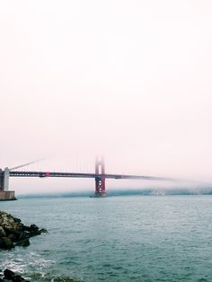 golden gate with @karlthefog