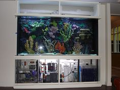 ✧☽ filtrarion Aquarium ☾✧ #bohemefithome