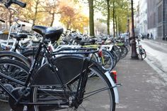 Seriously, could there be any more bicycles dominating Amsterdam?