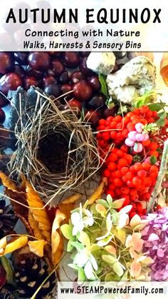 CONNECTING WITH NATURE - A nature harvest and sensory bin. Also known as Fall Equinox and Mabon The Autumn Equinox is a time of great change in nature. It is also a wonderful time to connect with nature through fun kid activities.