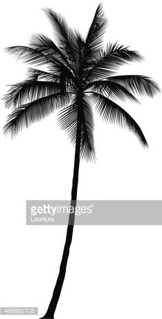 Incredibly detailed palm tree silhouette.