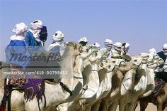 Algeria, Tassili n'Ajjer, Tuareg festival, camel race