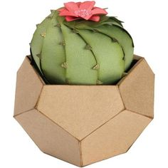 Sizzix - Thinlits Die Set By Lynda Kanase - Barrel Cactus and Geometric Holder Flower Bookey, Flower Film, Flower Names, Cactus Flower, Flower Pots, Diy Flowers, Prickly Pear Cactus, Mini Cactus, Cacti And Succulents