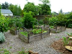 Raised garden beds - Oregon company