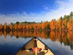 thisrusticlife:    (via Autumn Canoe Trip On Golden Pond | Flickr - Photo Sharing!) #OrvisWomen