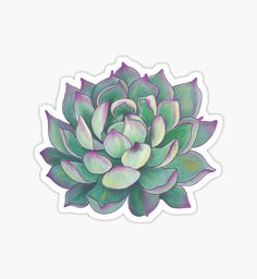 Sticker packs | Collections | Redbubble