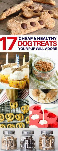 17 Homemade Dog Treats for Your Four-Legged Family Member