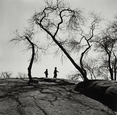 "Gerda Peterich, Central Park Strollers, 1939-46, gelatin silver print, 6.375"" x 6.375"", Collection of the Museum of Art, UNH, Gift of Lily Hoffman"