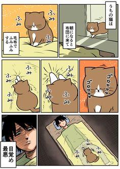 モーニングコール : ©️鴻池 剛 Animals And Pets, Cute Animals, Soft Kitty Warm Kitty, Cat Comics, Aesthetic Art, Comic Strips, Funny Cats, Peanuts Comics, Comedy