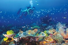 Top islands for a Malaysia holiday   CNN Travel