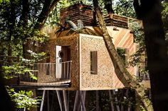 13 Amazing Treehouse Holidays With a Hot Tub in the UK [2021] The Woodman, Holidays In Cornwall, Log Burner, Wood Fired Pizza, Isle Of Wight, Open Plan Living, Game Room, Canopy, Countryside