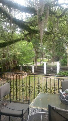 The amazing view outside balcony window from our bedroom in Jacksonville Florida Airbnb. It was like a 1930s Hollywood getaway in Jax  From there we drove to Jacksonville Florida to stay in Alyssa's  Airbnb that was like a Hollywood Castle. It was slightly creepy too and I got scared. I came in and was putting things up in the kitchen  and her David go up the stairs .  Then David came in through the front door ! It wasn't him who went up the stairs  exclamation point  who was it we thought…
