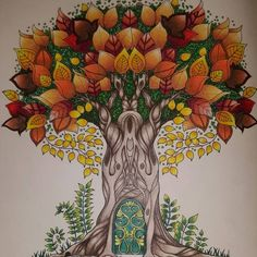 Johanna Basford | Picture by Cari Schofield | Colouring Gallery