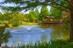 Oxbow Clark Gardens, Pond Design, Art And Craft Design, Pavilion, Garden Art, Arts And Crafts, Park, Photos, Pictures