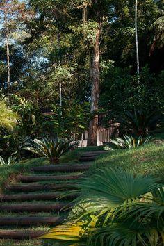 The Beach House, rede Design Hotels - Casa de Mónica Penaguião, Paraty/RJ, Brasil (dormentes) Garden Stairs, Garden Gazebo, Jungle Gardens, Hillside Landscaping, Eden Park, Landscape Design, Beautiful Places, Scenery, Backyard