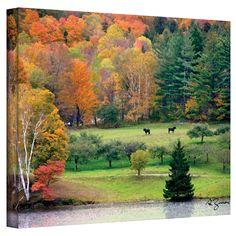 ArtWall George Zucconi Killington, Vermont Wrapped Canvas, Size: 36 x Orange Canvas Art Prints, Painting Prints, Paintings, Killington Vermont, Green Wall Art, Autumn Scenery, Fall Pictures, New Wall, Orange