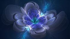 wallpapers, color, carpet, background, fractals, fractal, gallery, beautiful, wallpaper