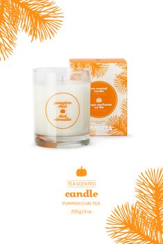 David's Tea Pumpkin Chai Candle- A soy wax candle inspired by our warm and spicy Pumpkin Chai tea.