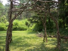 This wedding trellis of reclaimed lilac wood from the owners property is situated in Ithaca NY. By Frank Leahy