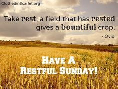Take rest; a field that has rested gives a bountiful crop.