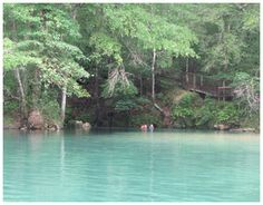 Econfina Creek - Fresh Springs in NW Florida. Has information on where you can put canoes/SUP's in...