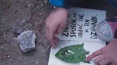 """BOOKSHOT Keri Smith """"Zniszcz ten dziennik wszędzie"""" // Między wierszami #zniszcztendziennikwszedzie #zniszcztendziennik #kerismith #wreckthisjournal #book #ksiazka #KreatywnaDestrukcja #DIY"""
