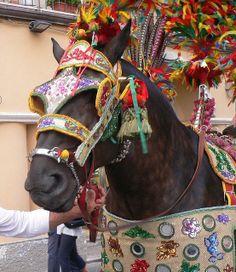 Taormina folk (Sicilian cart) by Luigi FDV, via Flickr