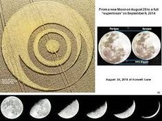 Image result for august 23rd crop circle essex