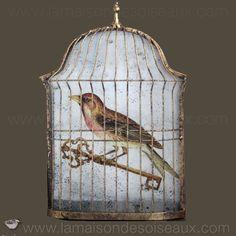Cage grive ancienne la maison des oiseaux cages - Cage oiseau decorative interieur ...