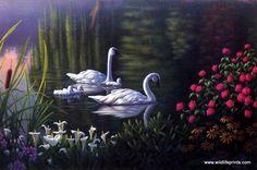 Kim Norlien Swan Family