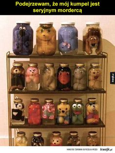 """How to """"preserve"""" stuffed animals.i figured out what to do with all my stuffed animals lol Ideias Diy, Art Plastique, Macabre, Oeuvre D'art, Plushies, Creations, Artsy, Cool Stuff, Funny Stuff"""