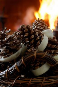 pinecone fire starter DIY...We have these, received them as a gift, and they are the perfect firestarter.  J need to make more and I'm thinking about using the cinnamon cones...M