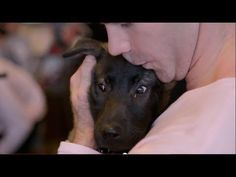 To prove that shelter pets are neither scary nor unpredictable, NHL superstars David Backes and Barret Jackman kissed every single adoptable pet in two animal shelters. Thanks to David and Kelly Backes and Barret and Jenny Jackman. Thanks to the wonderful shelters who opened their doors and partnered with us. http://youtu.be/GWdVaEps0DY
