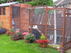 Outdoor Cat Pens Beautiful outdoor enclosure so indoor cats can go out safely.