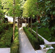 Double row hedges, in a garden by French designer Julian Decker Of Armandii