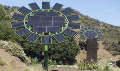 Solar Sun Flowers Project - Home Design - Google+