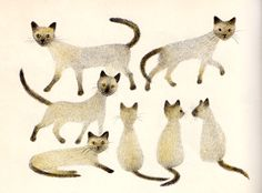 "¤ Cat illustration by Adrienne Adams from ""The Mouse Palace"" by Frances Carpenter."