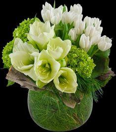 Wszystko lubię ...: 100 wspaniałych zdjęć kwiatów, aby rozjaśnić nasze dni!