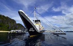 Scuba Dive Coron + Apo reef: 8 night Liveaboard trip + 24 scuba dives