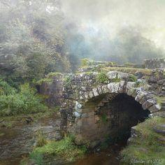 Ancient Stone Bridge, Yorkshire, England  photo via darkface
