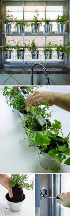 Check out how to build a DIY window mounted herb garden @istandarddesign