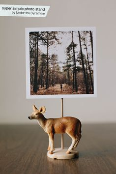 diy {super simple photo stand} (Under the Sycamore) Diy Craft Projects, Diy And Crafts, Projects To Try, Easy Diy, Simple Diy, Super Simple, Under The Sycamore, Picture Holders, Simple Photo