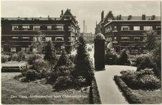 Abrikozenplein met zicht op de Okkernootstraat.