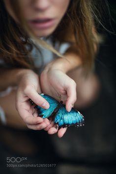 Blue Morpho by JesseHerzog #fadighanemmd