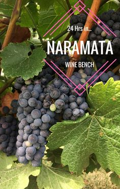 The Naramata Wine Bench: a 24 hour itinerary featuring the best location to wine taste in the Okanagan, British Columbia, Canada - Eat, Sip & Stay