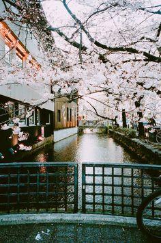 reminds me of the bridge in koe no katachi. <3
